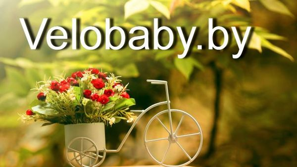 Velobaby.by